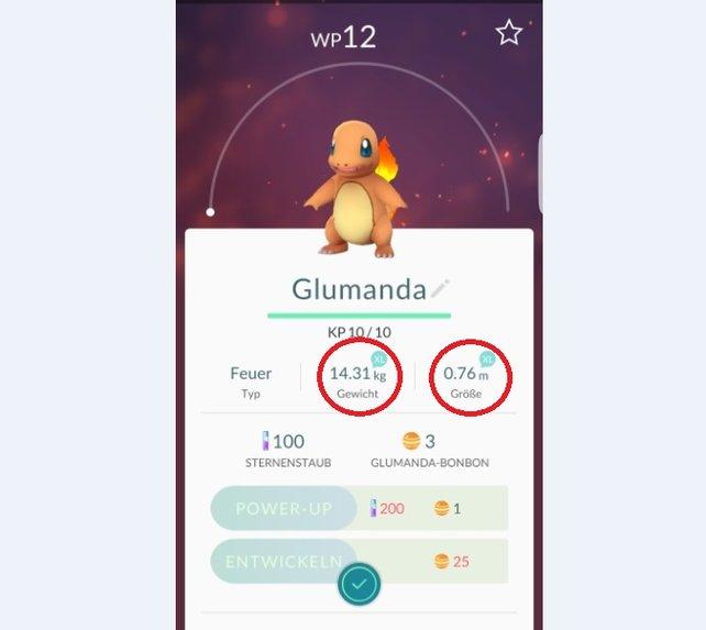 Profi-Tipp: Das Gewicht und die Größe sind ebenfalls entscheidend für die Pokémon.