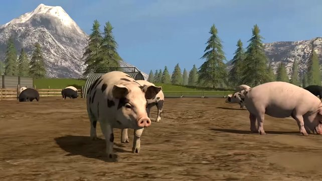 Neu mit dabei ist die Schweinezucht, die spielerisch simpel abläuft.