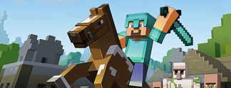 """Panorama: Minecraft in der Realit�t: Da hat sich wohl jemand """"verklickt"""""""