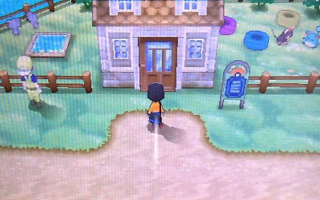 In der Pension zieht ihr neue Pokémon heran.