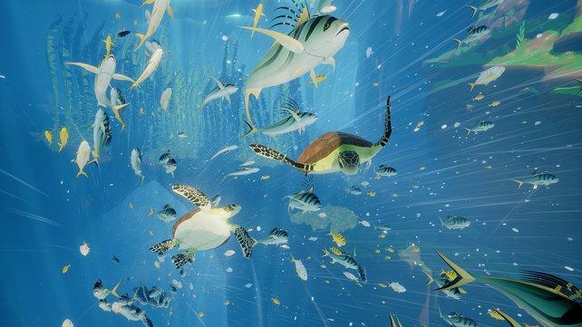 In Abzu trefft ihr Fische.