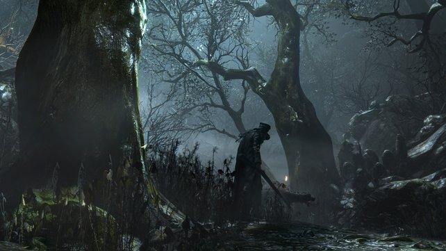 In der Welt von Bloodborne entstehen die Bestien aus normalen Menschen.