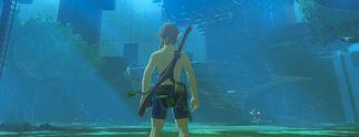 Tests: The Legend of Zelda - Die Legend�ren Pr�fungen: Das kann der erste DLC