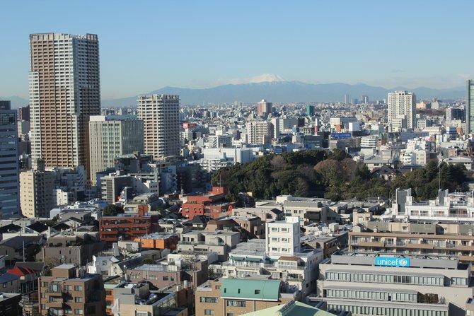 Guten Morgen, Tokio! In der Ferne seht ihr den Berg Fuji.