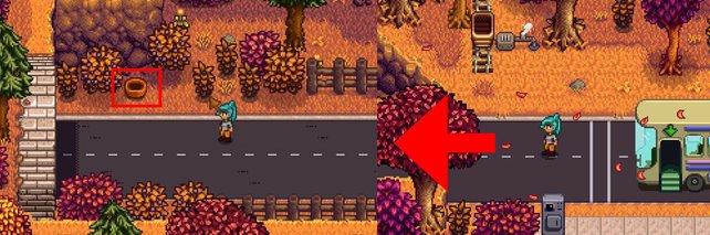 Der Weg zum Brombeerenkorb ist eigentlich recht einfach zu finden.