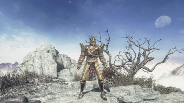 Die Rüstung des Aufgenommenen Ritters.