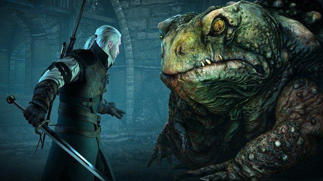Der Froschkönig Auge in Auge mit Geralt.