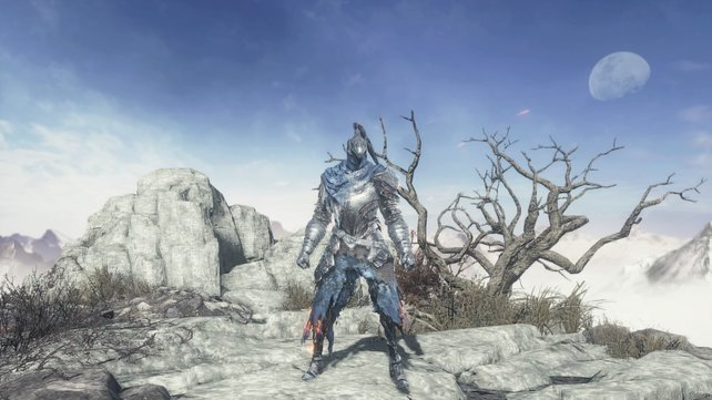 Diese Wolfritter-Rüstung wurde durch die Finsternis des Abgrunds befleckt.