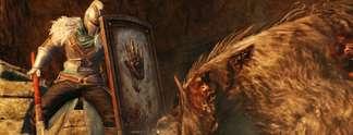 Dark Souls 2: Gibt es einen weiteren Zusatzinhalt?
