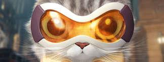 Panorama: Overwatch: So würden die Helden als niedliche Kätzchen aussehen