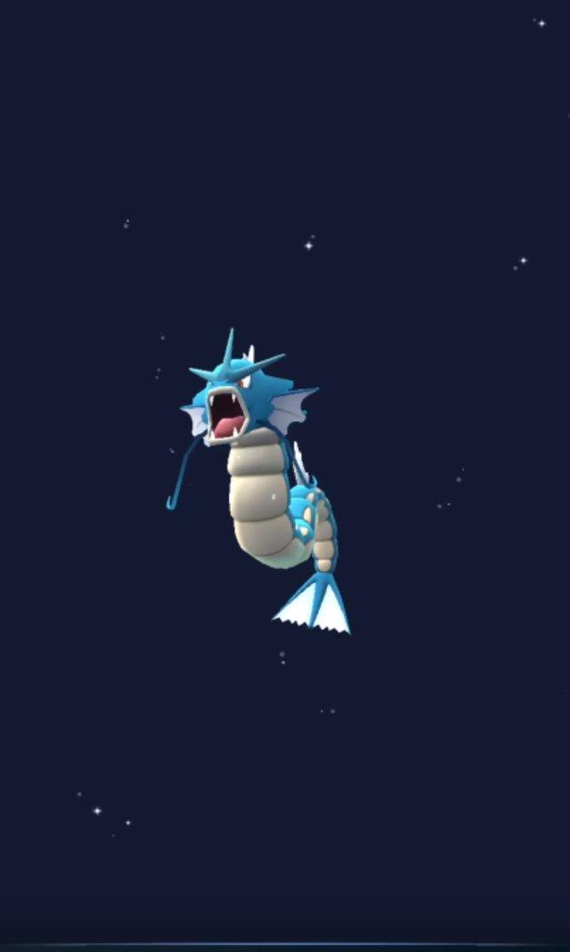 Garados ist ein sehr seltenes Pokémon!