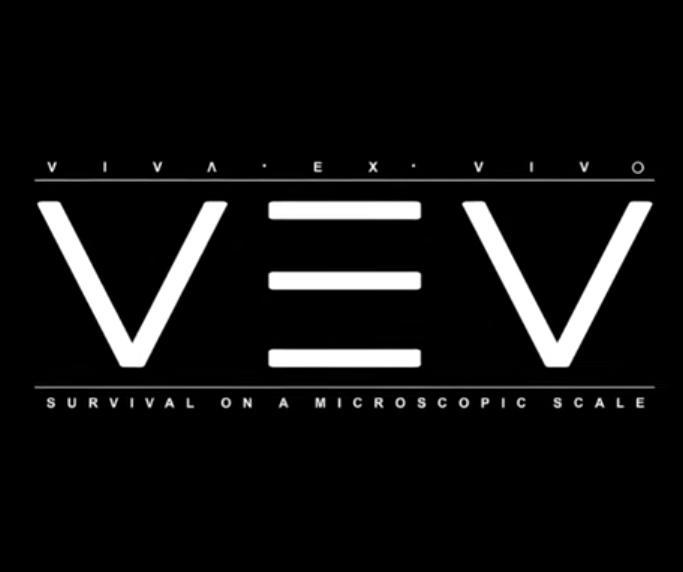 VEV - Viva Ex Vivo