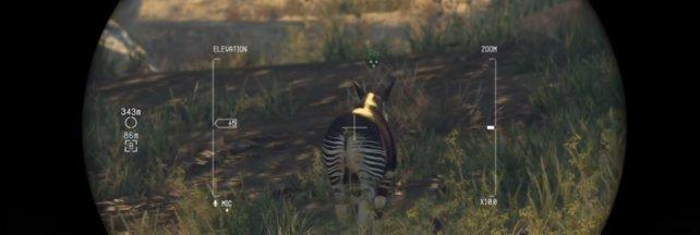 Snake visiert ein Okapi an, vergesst nicht Betäubungsmunition zu verwenden