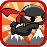 Flying Ninja Adventure