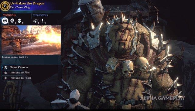 Die Overlords sind die Befehlshaber einer Festung und knackige Bossgegner.