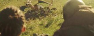 Pok�mon-Jagd endet in Schie�erei mit Verletzten