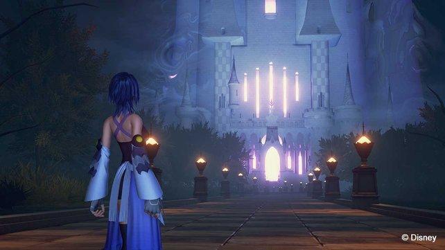 Geschafft! Aqua hat den Weg zum Schloss geebnet.