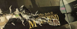 Panorama: The Elder Scrolls: Spielesammlung rettet Leben