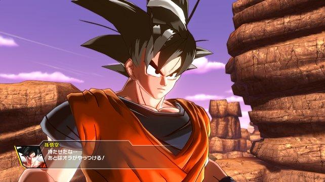 Son Goku macht sich bereit.