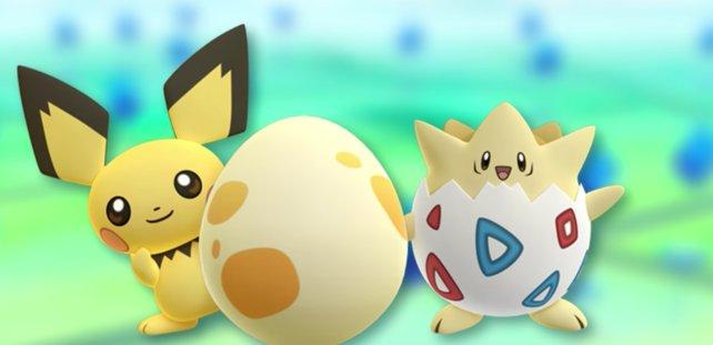 Die zweite Generation ist da! Schnappt euch neue Eier und brütet sie aus.