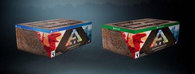 Auf Amazon wird die Collector's Edition für PS4 oder Xbox One bald vorbestellbar sein.