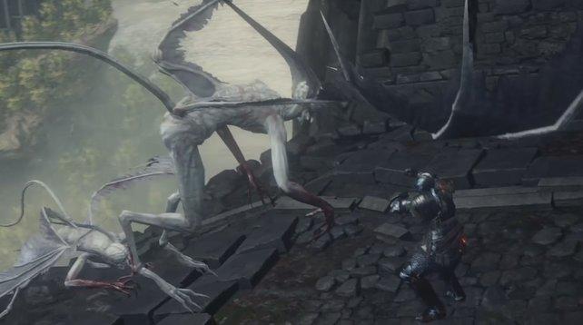Diese Gargoyles bringen euch zur Untoten-Siedlung.
