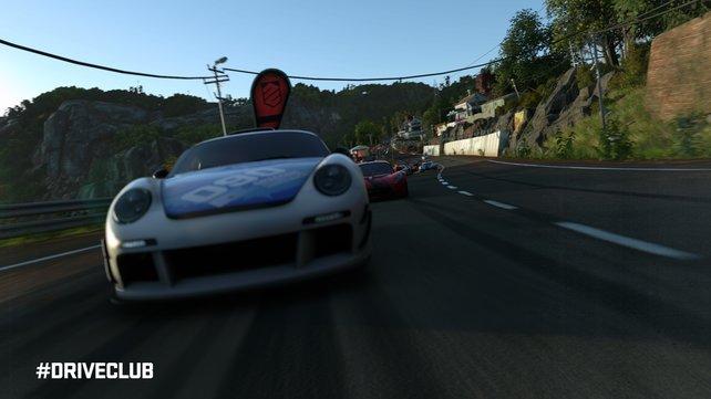 An den Rennen nehmen bis zu zwölf Fahrer teil.