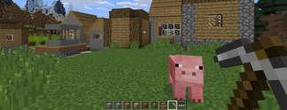 10 Fakten und Neuigkeiten zu Minecraft