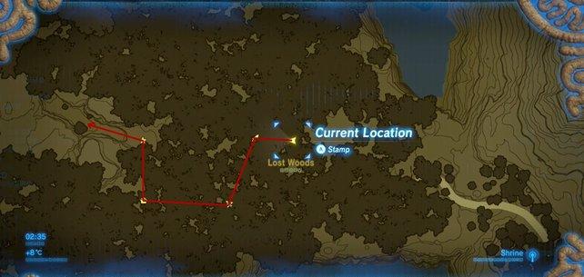 Folgt dieser Route, um den Wald durchqueren zu können.