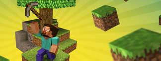 Minecraft-Quiz: Erkennst du alle Bl�cke?