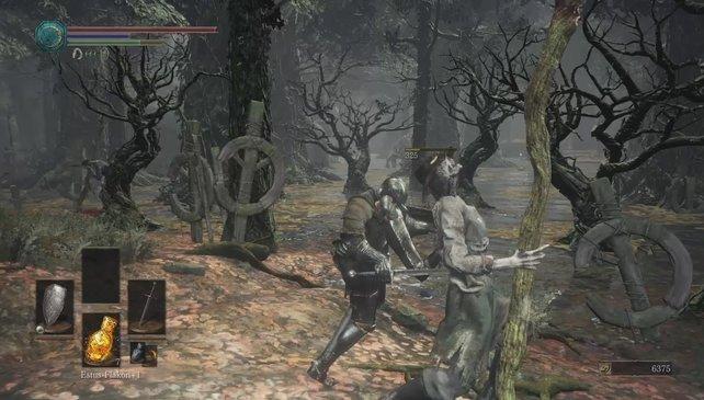 Die Lykanthropenjäger könnt ihr alle per Backstab töten.