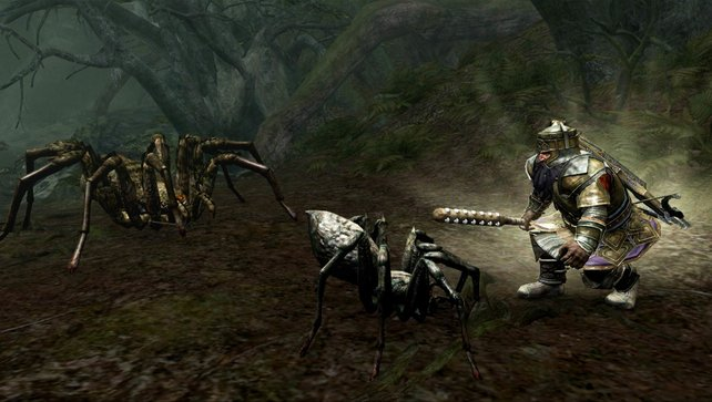 Farin haut mit seiner Waffe richtig zu. Selbst bei kleineren Spinnen ist das nötig.