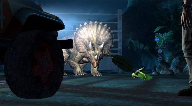 Der Triceratops wirkt etwas angespannt ...