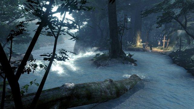 Tolle Atmosphäre: Hinter jedem Baum und Strauch kann ein Alien lauern.