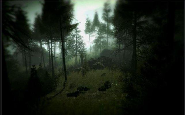 Im Wald lauert der Slenderman auf euch.