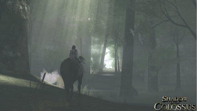 Mit eurem Pferd Agro reitet ihr durch verlassene und einsame Landstriche. Nur ihr seid hier. Und die Kolosse.