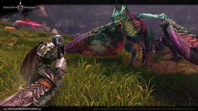 In Dragon's Prophet spielen die namensgebenden Drachen eine wichtige Rolle.