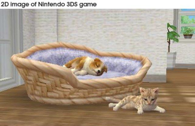 Nintendogs + Cats ist einer der Titel, die zum Start des 3DS geplant sind.