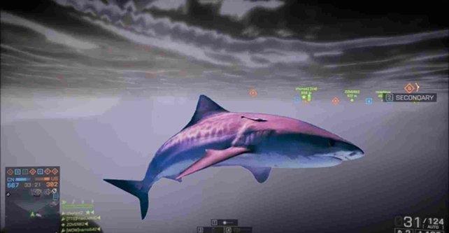 Ja, der Haifisch, der hat Zähne ...