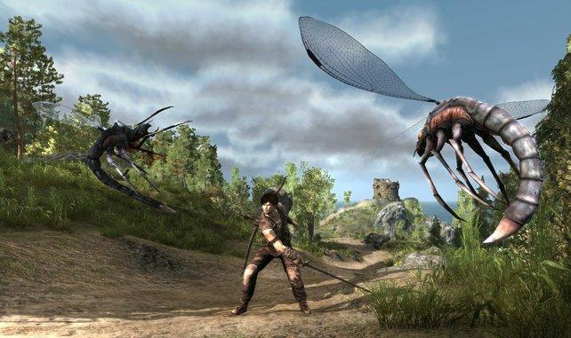 Blutfliegen sind virtuell ähnlich störend wie Mücken im echten Leben.