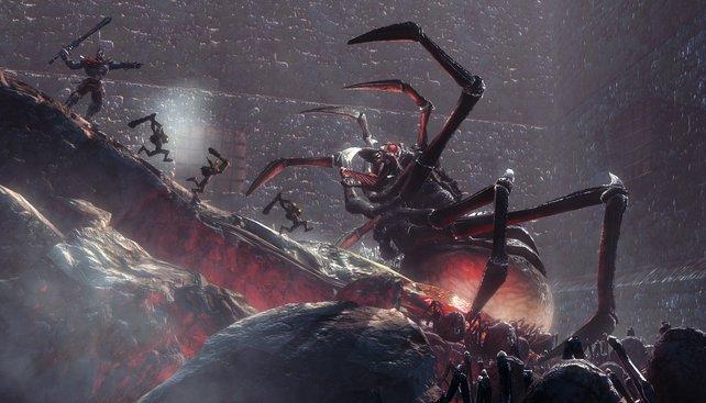Riesenspinnen gehören ausgerottet.