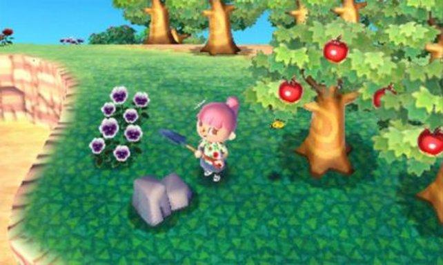 Auf diesem Bild seht ihr mindestens sieben Dinge, mit denen ihr euch in Animal Crossing die Zeit vertreiben könnt.