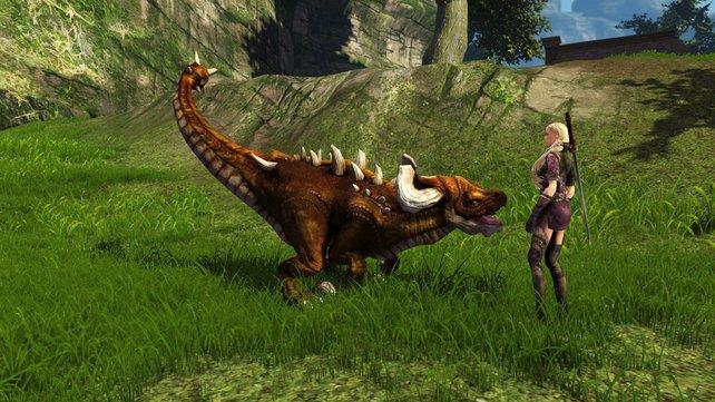 Die Drachen-Auswahl in Dragon's Prophet hat für jeden Geschmack etwas zu bieten.