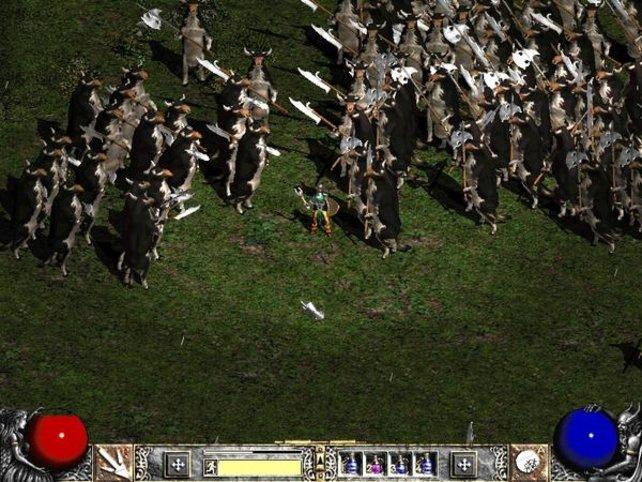Vorsicht, hinter euch sind Kühe mit Schwertern!
