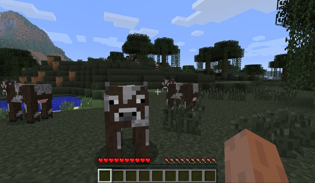 Minecraft ist ein Beweis dafür, dass ein gutes Spiel nicht zwingend eine teure Hardware benötigt.