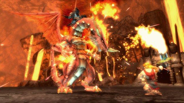Drachen dürfen in einem Online-Rollenspiel nicht fehlen.