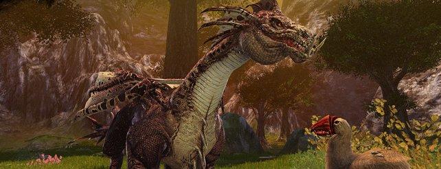 Die Drachen sind nur ein Grund für Dragon's Prophet.