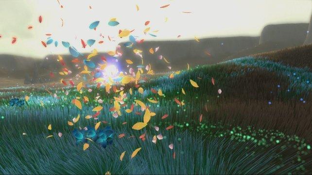 Hunderte Blüten verhelfen euch, die Welt zu heilen.