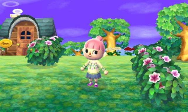 Schön und putzig ist die Grafik von Animal Crossing.