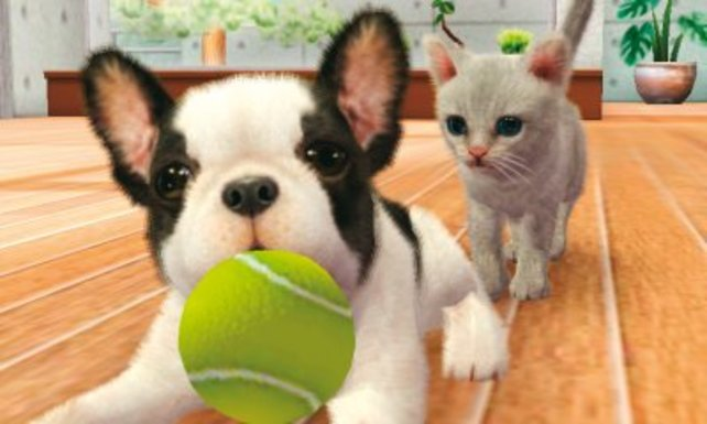 Neben Hundy-Babys versorgt ihr erstmals auch kleine Katzen.